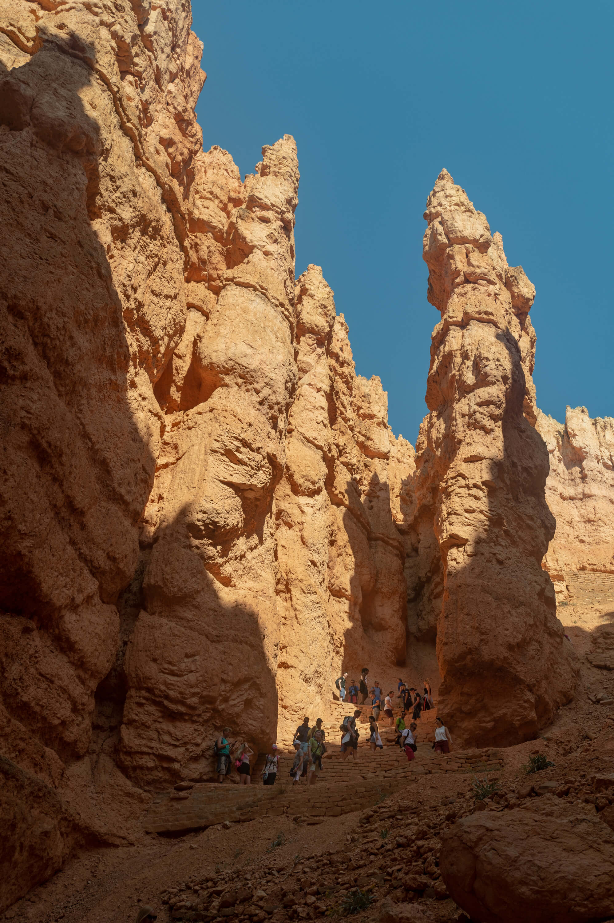 people walking through hoodoos in Bryce Canyon National Park
