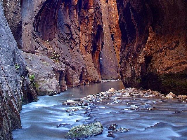 The Narrows hike through a slot canyon in Zion National Park
